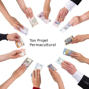 Projets avec le crowdfunding