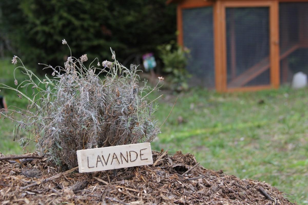 fabriquer des tiquettes pour son potager permaculture. Black Bedroom Furniture Sets. Home Design Ideas