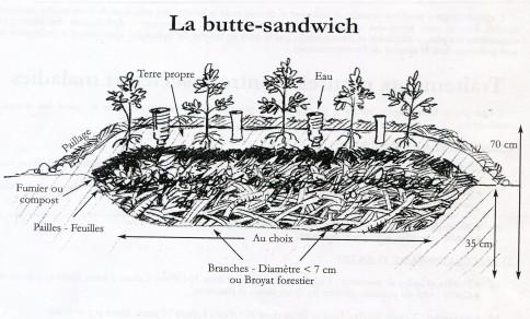 Photo de coupe d'une butte de culture sandwich