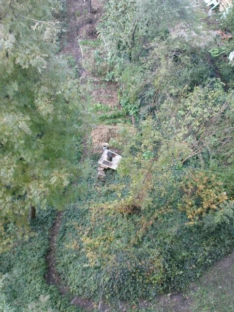 vue d'en haut du niveau 3 11/11/2014