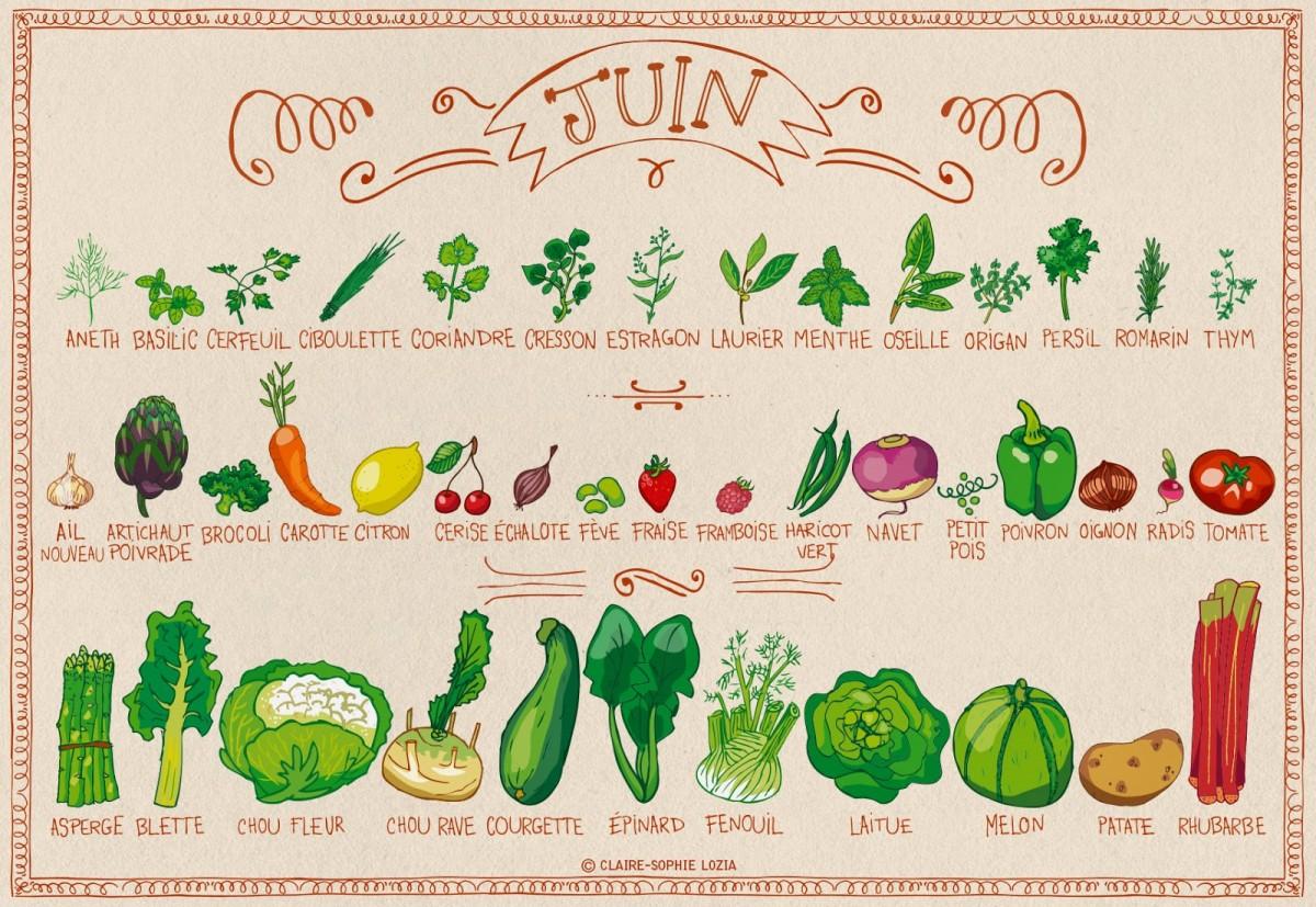 Miam miam juin fruits et l gumes de saison permaculture - Tableau legumes de saison ...