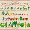 Miam-Miam JUILLET Fruits et légumes de saison