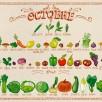 Miam-Miam OCTOBRE Fruits et légumes de saison