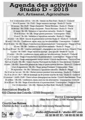 programme d'activités 2015 du Studio D :