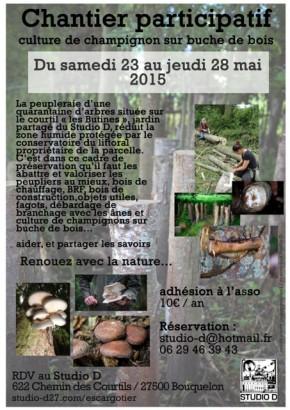 chantier participatif autour de la culture de champignons sur buches