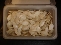 graines de citrouilles 2