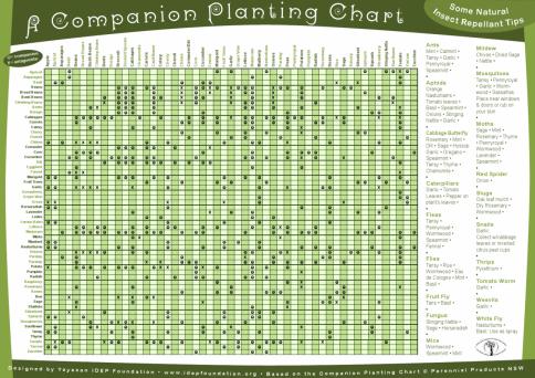 Liste d'associations de plantes (2)