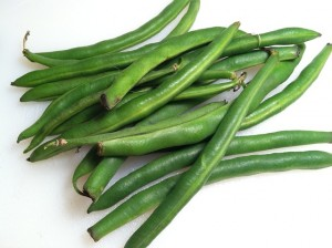 haricots permaculteurs