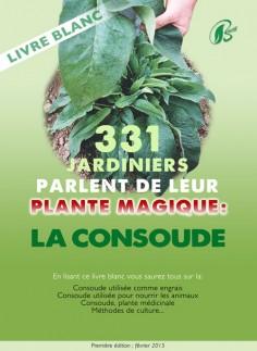 La consoude, plante indispensable pour les permaculteurs