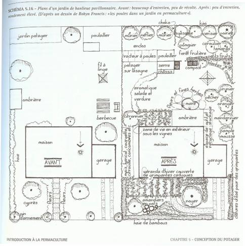 Design permaculturel d'un petit jardin