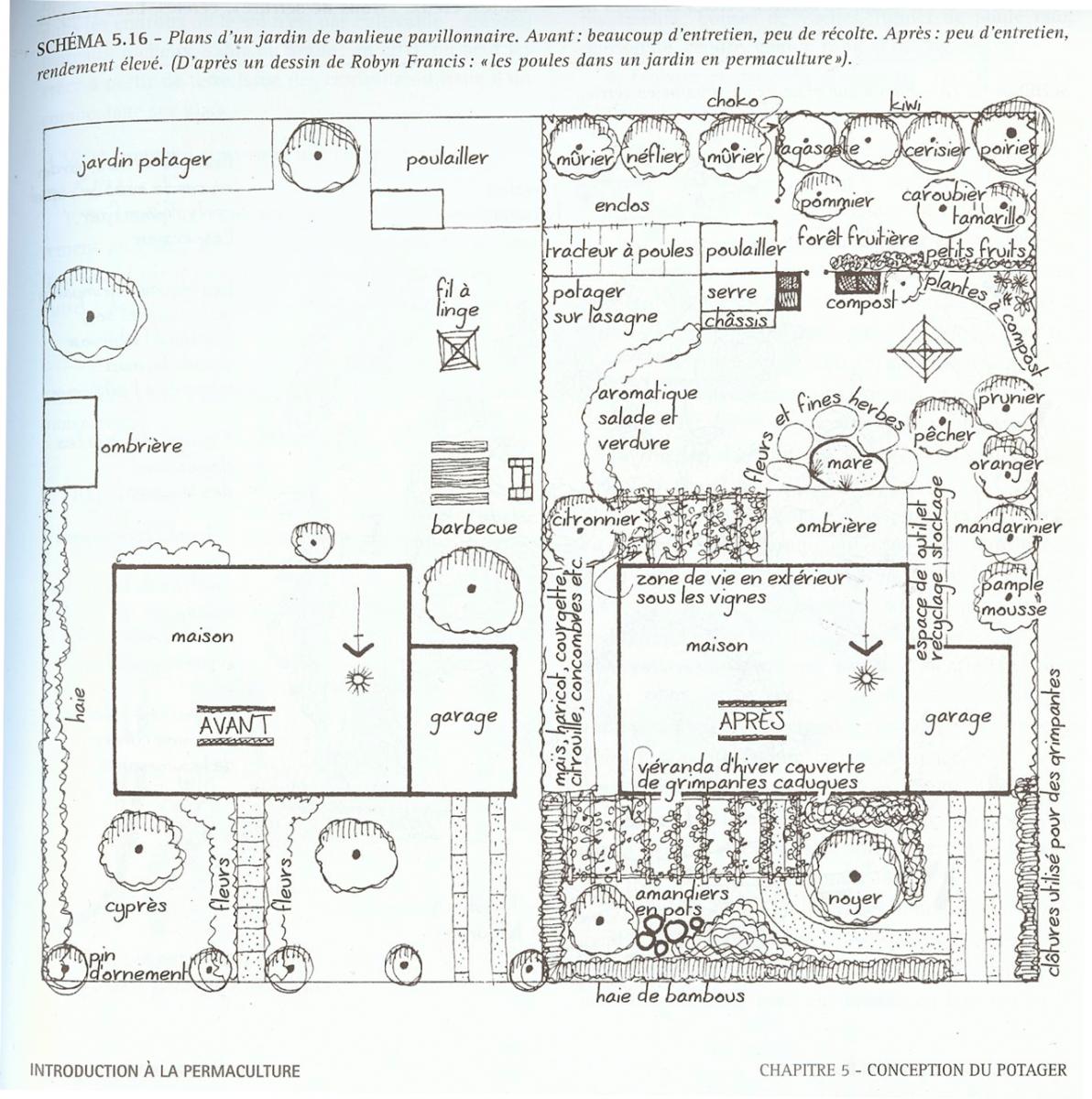 Design permaculturel d 39 un petit jardin permaculture for Jardin permaculture 2015