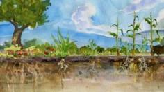 Symphony of the Soil (sous titre fr)