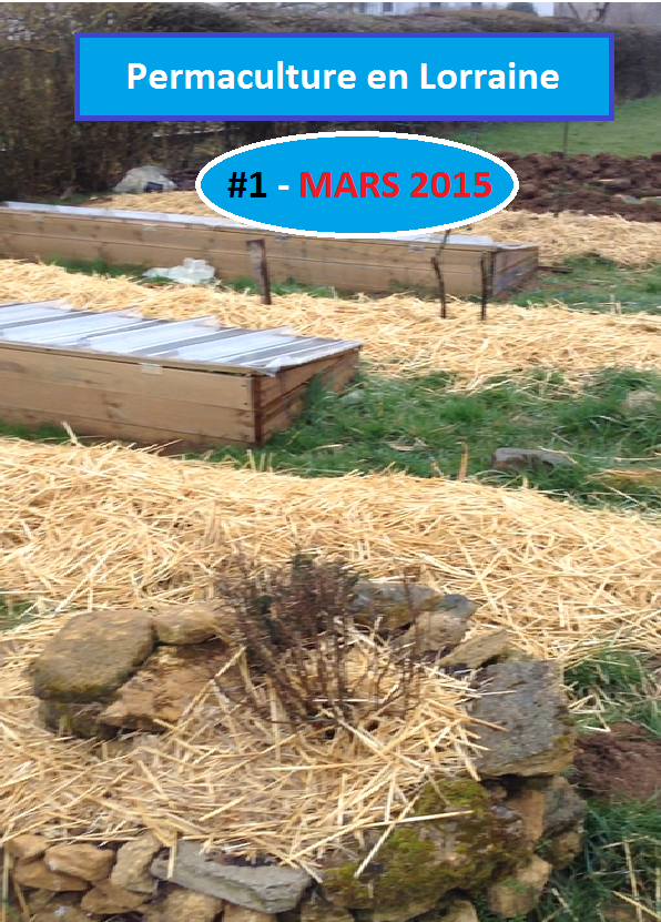 Permaculture en lorraine mars 2015 visite du jardin for Jardin permaculture 2015