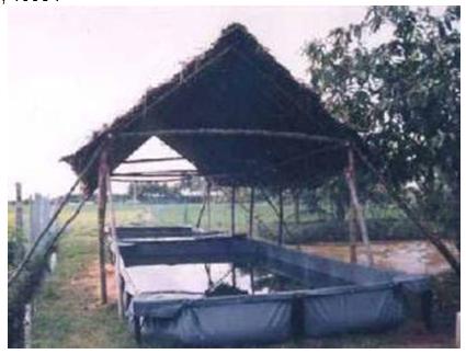 Photo d'un bassin en tissu polyamide enduit PVC, Ecopark, Madurai, Tamil Nadu (Inde), 18 m2, 1998