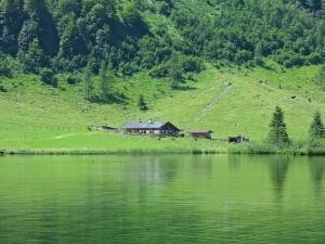 permaculture dossier spiruline (2)