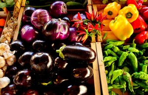 permaculture dossier spiruline (5)