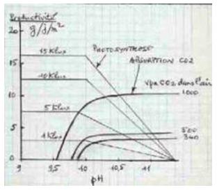 vitesse absorption