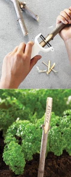 Faire des étiquettes pour ses fruits et légumes