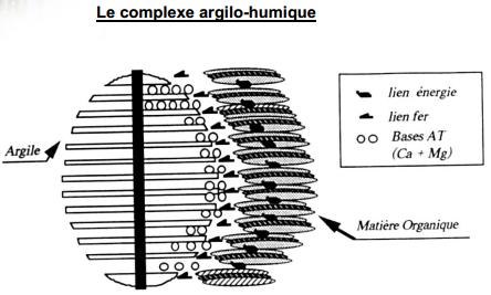 complexe argilo humide