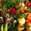 Généraliser une agriculture écologique (4)