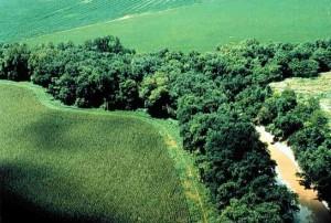 Généraliser une agriculture écologique (6)