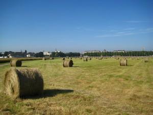 prairies permanentes pousset (1)