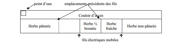 paturages (1)