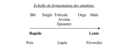 systeme dugestif des ruminants permacuture (1)