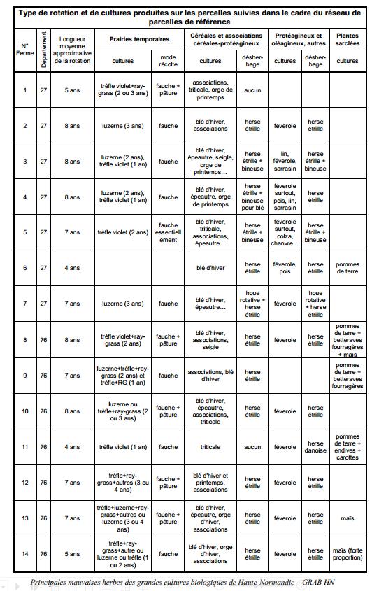 Guide des mauvaises herbes permaculteurs (2)