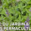 Visite du jardin et essais en permaculture 1/2