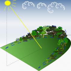 permaculture design (15)