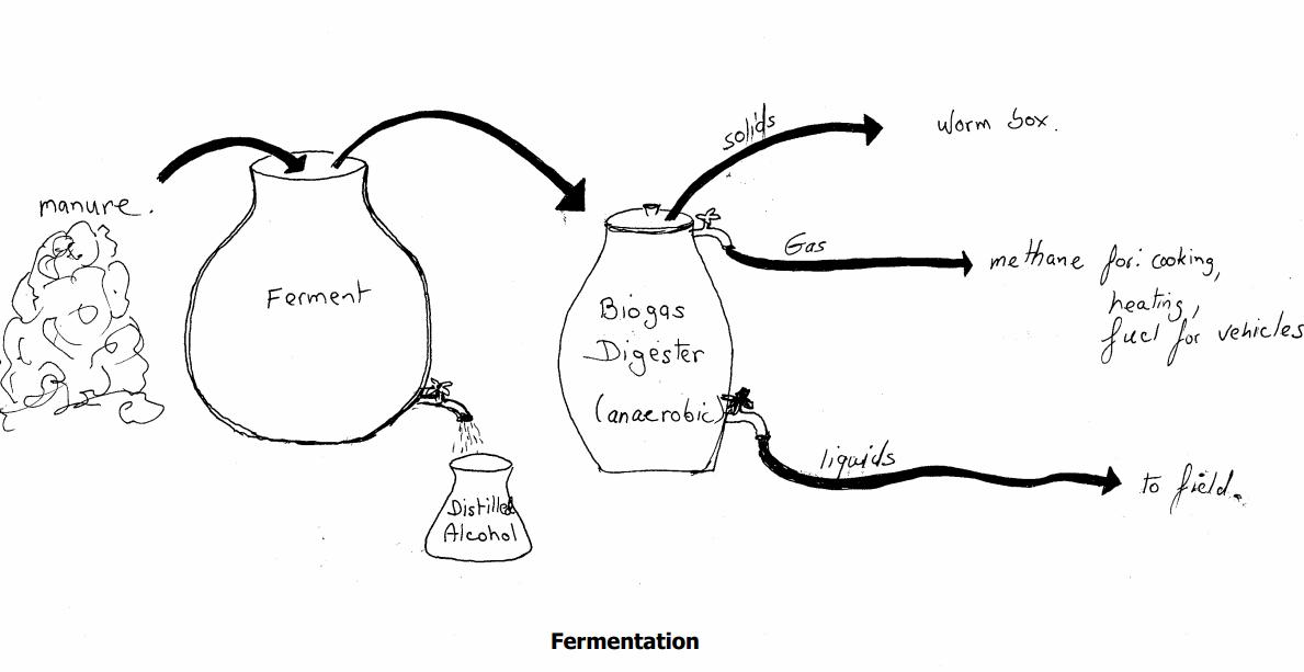 permaculture design (8)