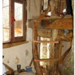 La cabane des crapauds (36)