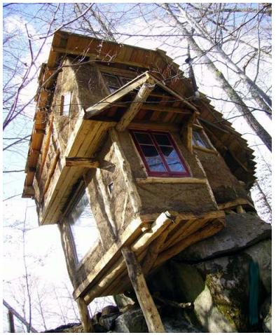 La cabane des crapauds (1)