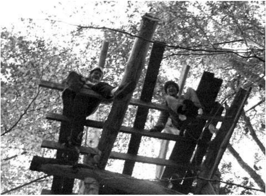 La cabane des crapauds (14)
