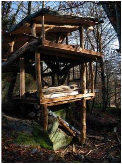 La cabane des crapauds (16)