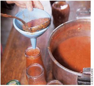 l'été indien des tomates permaculteurs (2)