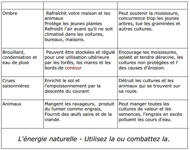 la voie de la permaculture (23)