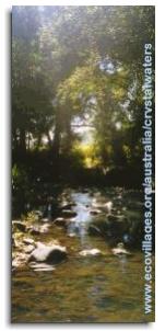 jardin d'eden permaculture (4)