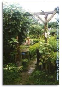 jardin d'eden permaculture (5)