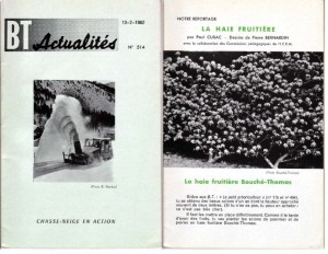 Haie de pommiers semi-vigoureuse - B. Thomasjpg_Page2_Image1
