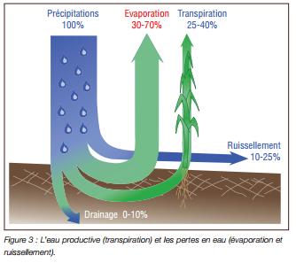 Gestion durable de la terrre -L'efficience de l'eau (2)