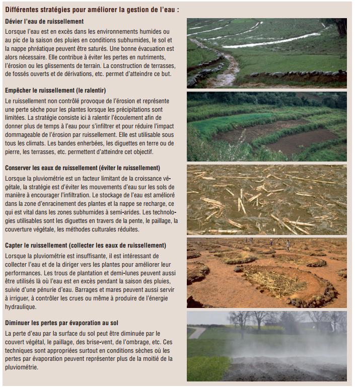 Gestion durable de la terrre -L'efficience de l'eau (8)