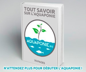 Téléchargez votre ebook sur l'aquaponie