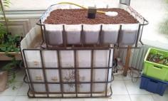 Installation d'un système aquaponique à la maison.