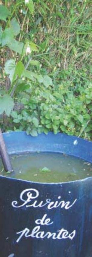 jardiner sans pesticidesjpg_Page17_Image2