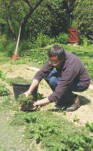 jardiner sans pesticidesjpg_Page25_Image2