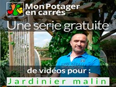 potager-carre