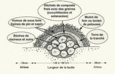 idée reçue sur les buttes de permaculture