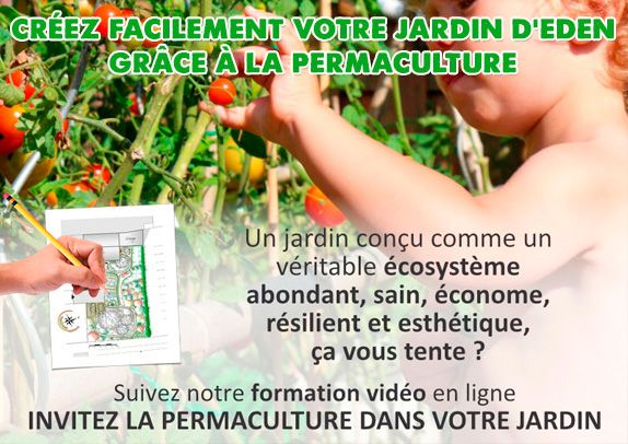 permaculture-design